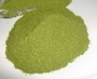 Moringa poeder Philippijnen 150g
